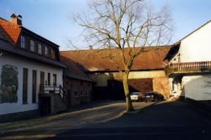 Bild61
